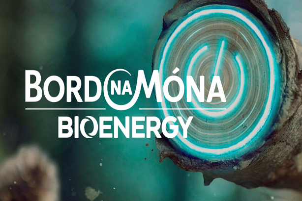 Bord na m na bioenergy plan to invest in wood pellet plant in us to secure biomass supply irbea - How to make wood pellets wise investment ...